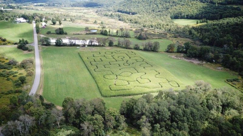 Fly Creek Valley Corn Maze & Pumpkin Patch