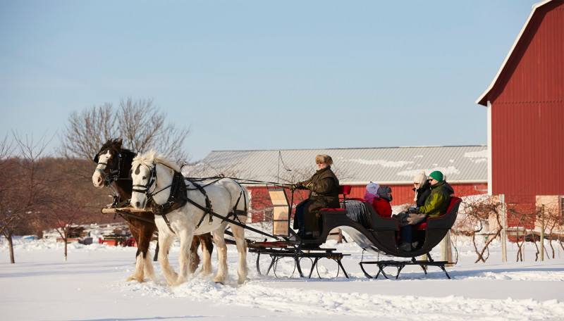 Mayberry's Carriages-Fish Creek