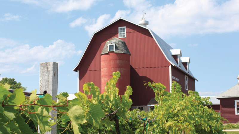 Lautenbach's Orchard Country Winery & Market (2)
