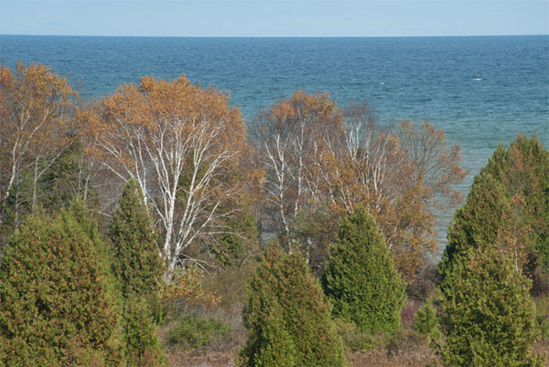 Legacy Nature Preserve at Clay Banks