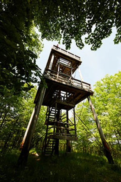 Mountain Park and Lookout Tower