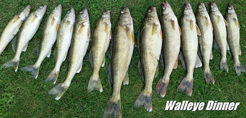 Fish Anytime Charters