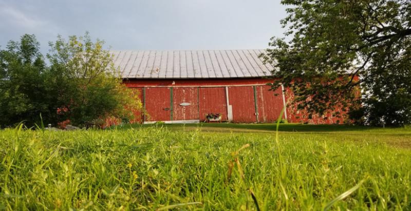 The Fiddler's Farm (1)
