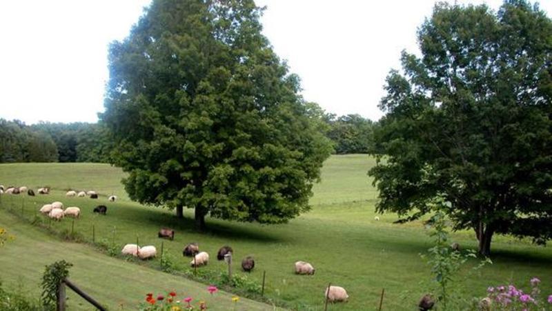 Hudson Valley Sheep & Wool Company