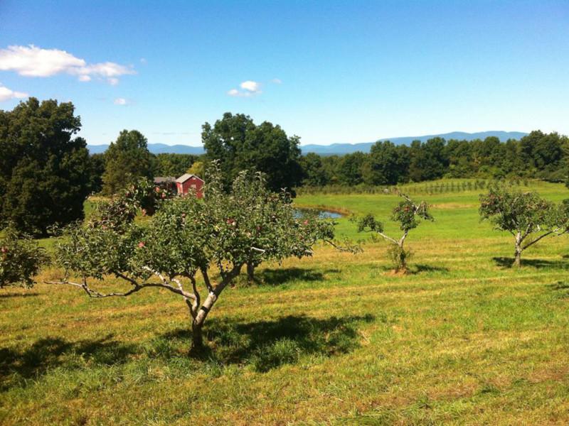 Cedar Heights Orchard