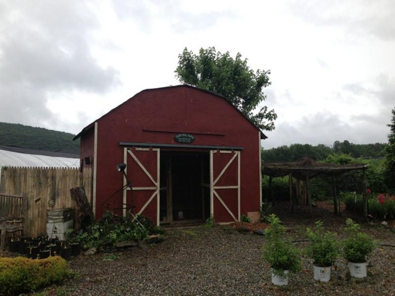 Daisey Hill Farm