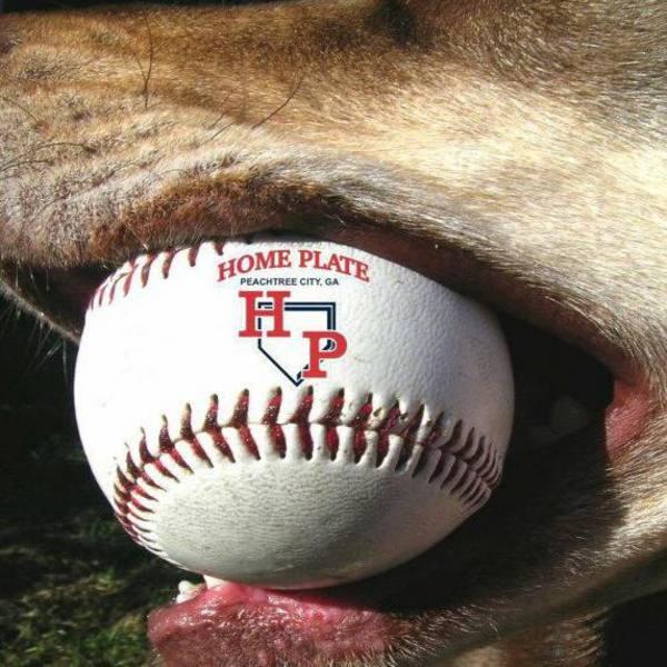 Photo of Home Plate Baseball Softball & Performance Training