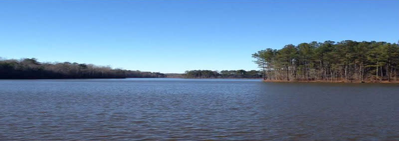 Photo of Lake McIntosh