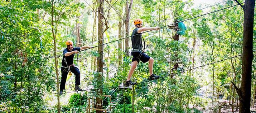 TreeTop Challenge Currumbin