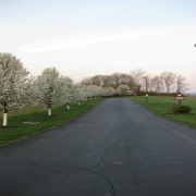 Crosby Township