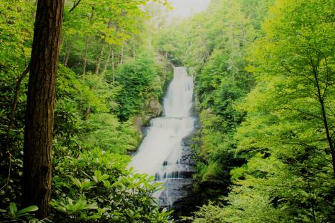 Explore the beauty of the Poconos on a waterfall tour