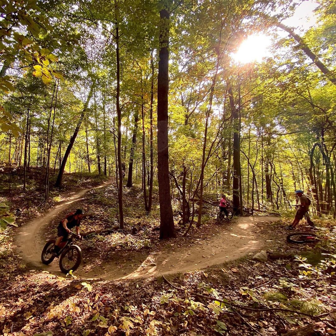 Try These 8 Outdoor Activities Around Ann Arbor This Fall!