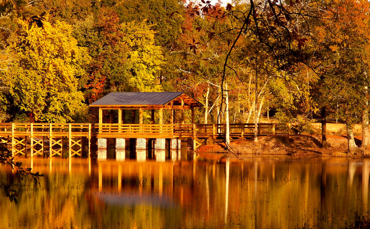 Thanksgiving In Augusta Ga Fall Events