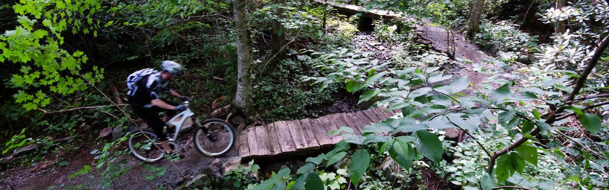 Mountain Biking In The Blue Ridge Mountains