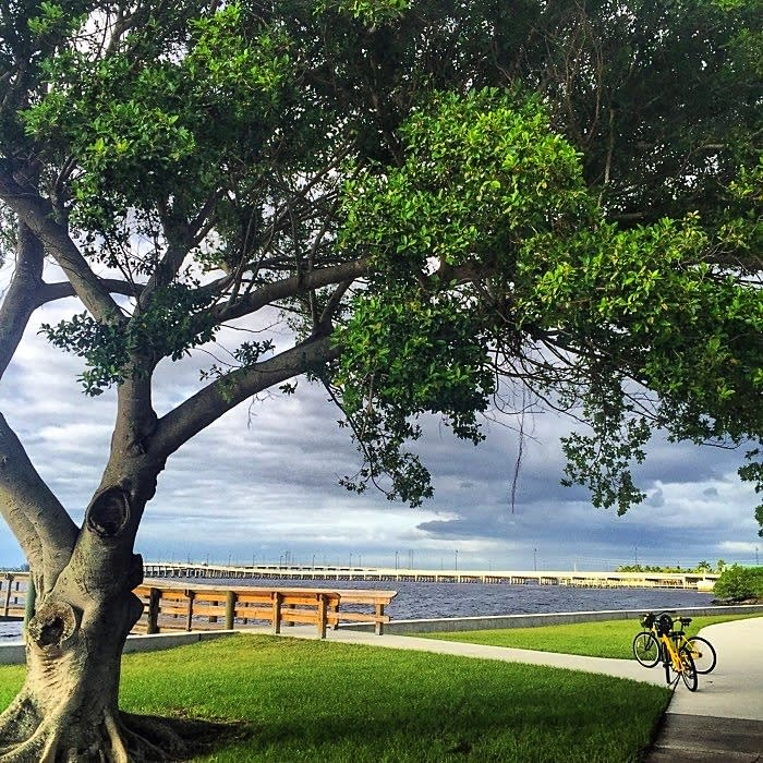 Find Your Adventure in Punta Gorda and Englewood