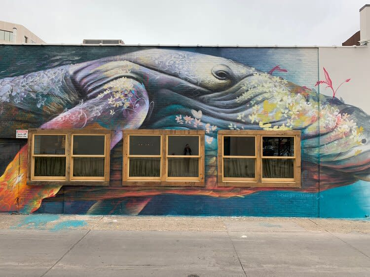 A List Of All The Murals In Dallas