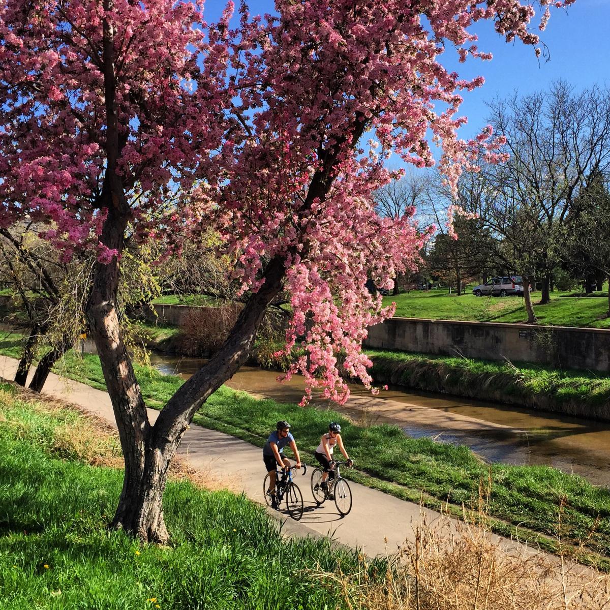 Denver Bike Trails   VISIT DENVER
