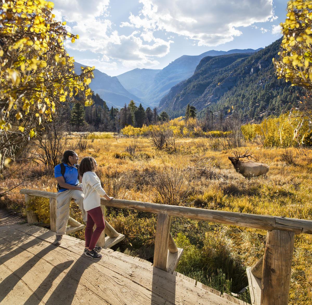 Outdoor Adventures In Estes Park Cabins Trails Amp Birding