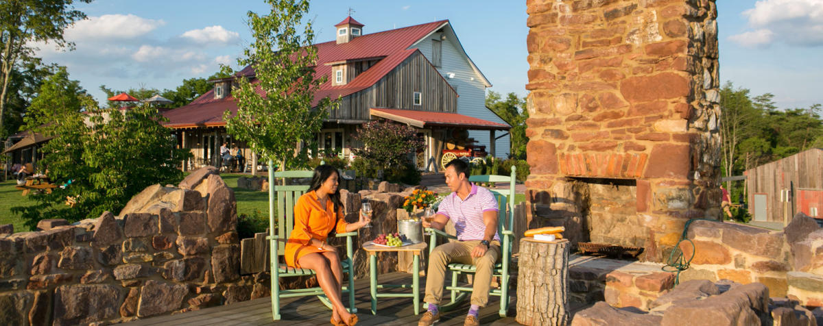 Enjoy Fairfax County's Award-Winning Historic Wineries