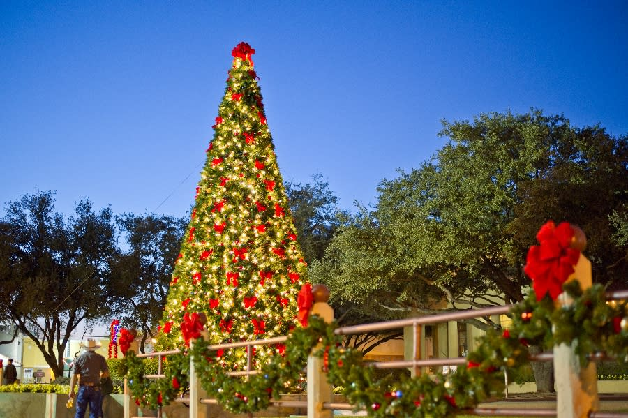 Fort worth family fun in december 2016 - American gardens west 7th fort worth ...