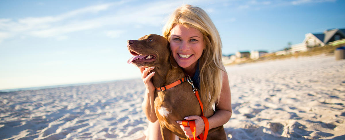 Pirate Beach Dog treats