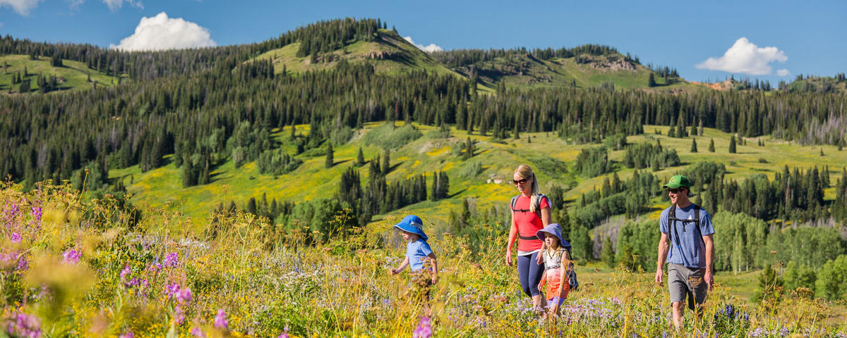 Family Hiking Trails Around Steamboat Springs Colorado