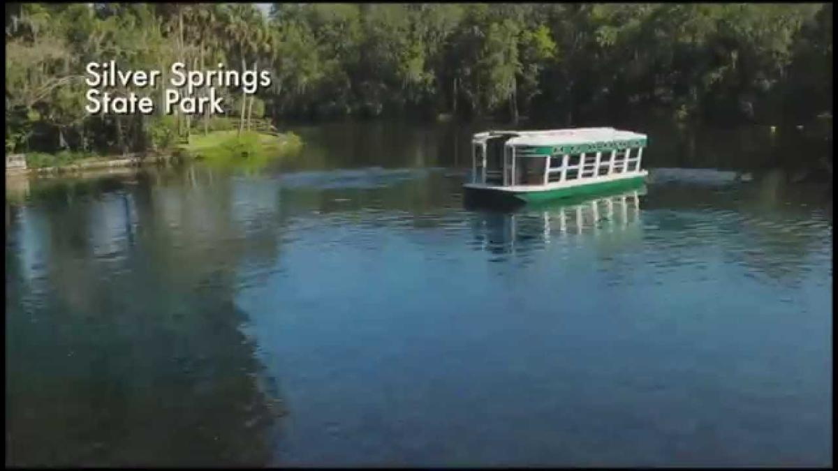 Englewood Florida - Things to Do & Attractions in Englewood FL