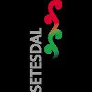 Square logo Setesdal