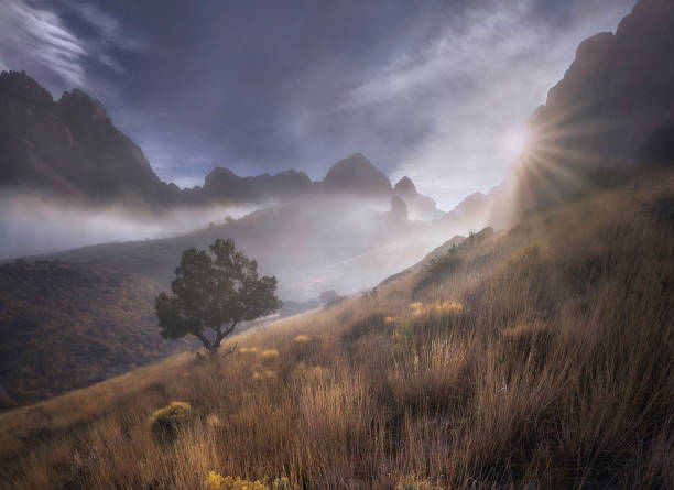 How A Lifelong Love For The Organ Mountains Launched An