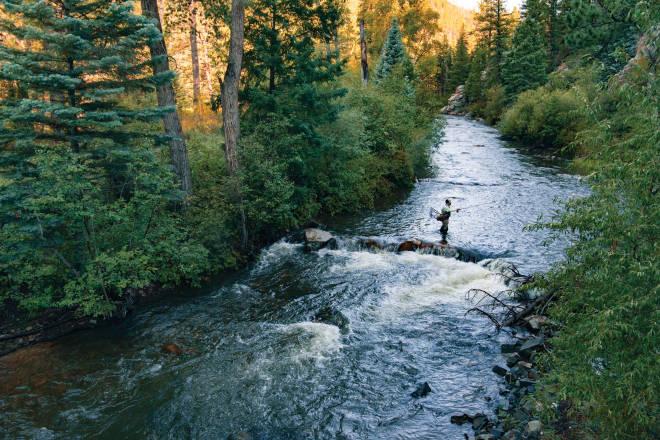 Fly Tying-SPIRIT river Bodi-STRETCH OLIVE