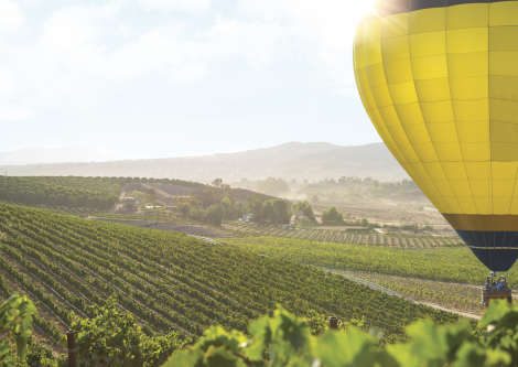 Hot Air Balloon Over Temecula Vineyards