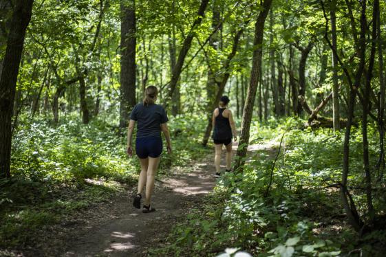 Hiking at Lowes Creek