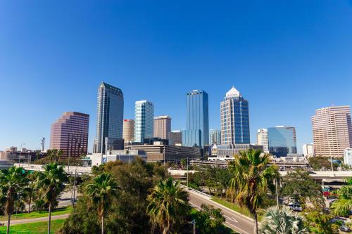 Record January Kicks Off Peak Season in Tampa Bay