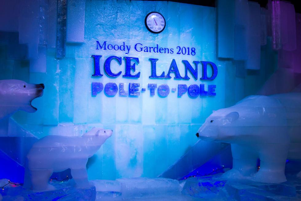 ICE LAND at Moody Gardens Galveston