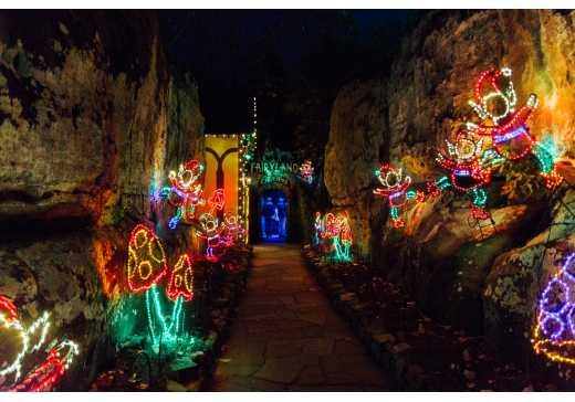 Garden Walk Chattanooga: Blog