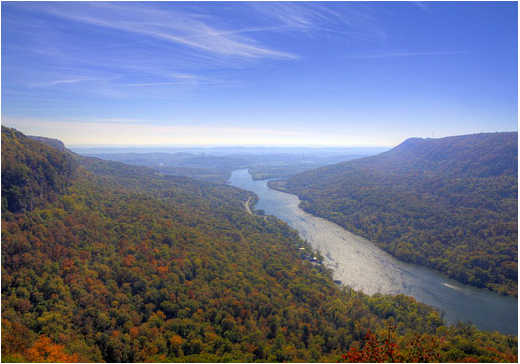 Best Places to Paddle on the Tennessee River