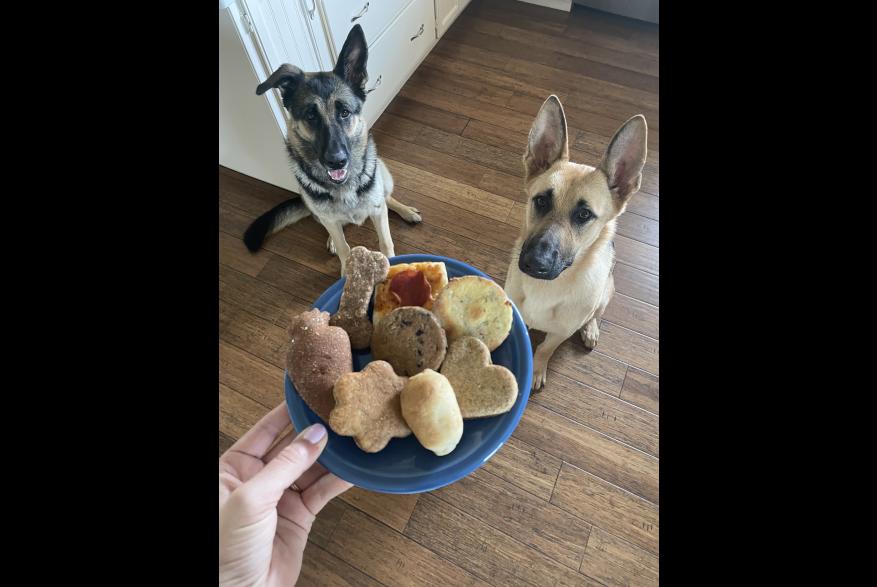 Homemade Dog Treats from Susie's Scrumptious Snacks at Denton Community Market