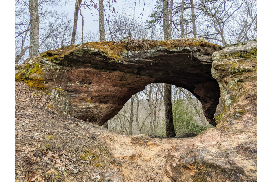 #CaptureTheKentuckyWildlands Photo Contest May/June 2021 - Natural World Category - Arch in Sheltowee Trace Photo by Sharon Standifer