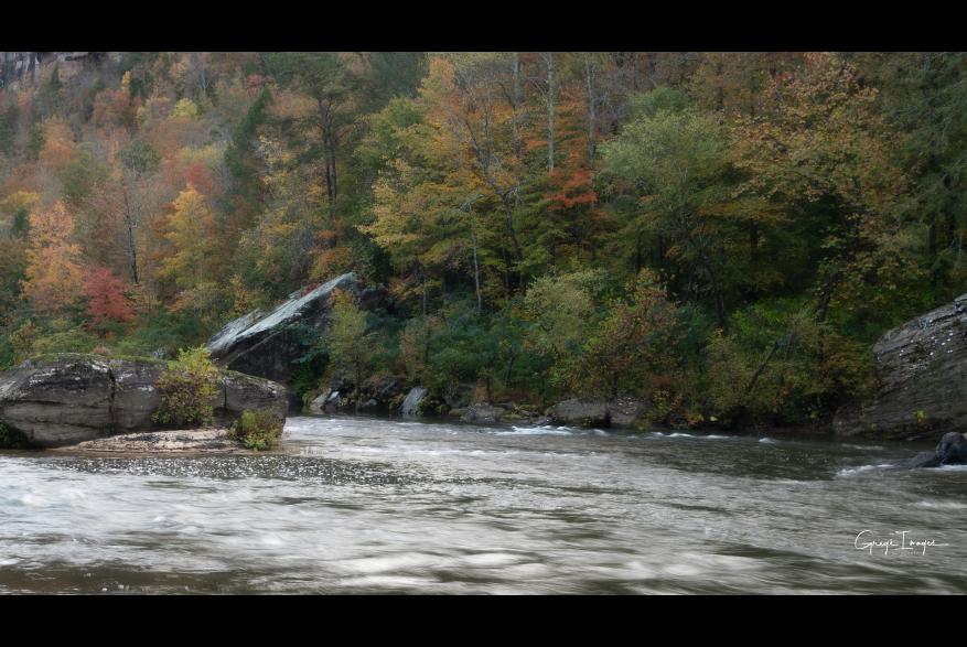 #CaptureTheKentuckyWildlands Photo Contest May/June 2021 - Natural World - Big South Fork Fall Colors Photo by Greg Davis