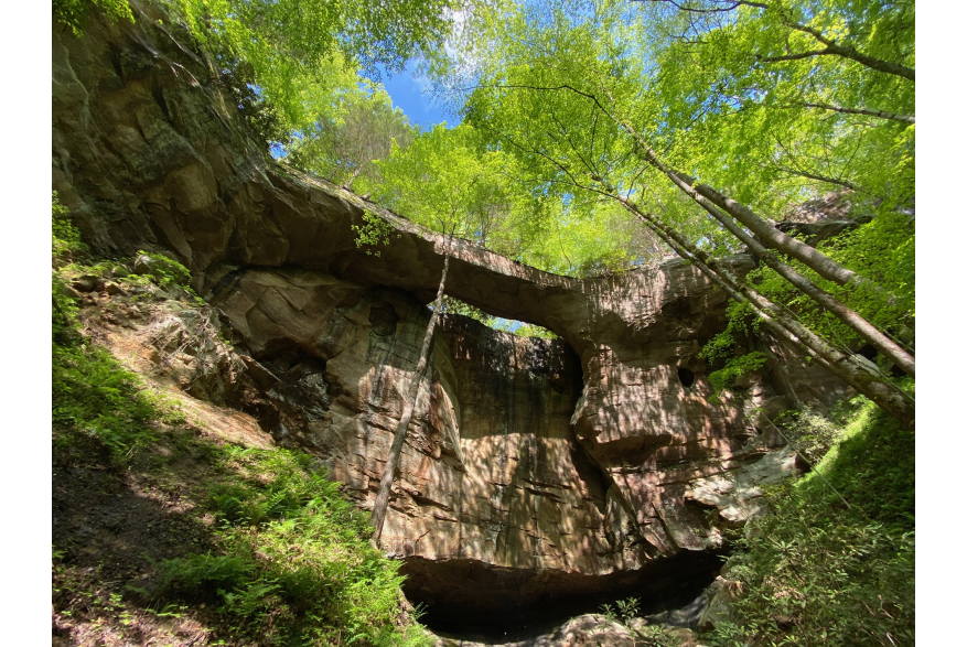 #CaptureTheKentuckyWildlands Photo Contest May/June 2021 - Natural World - Flat Hollow Arch - Murray Pendergrass Nature Preserve Photo by Dustin Robinson