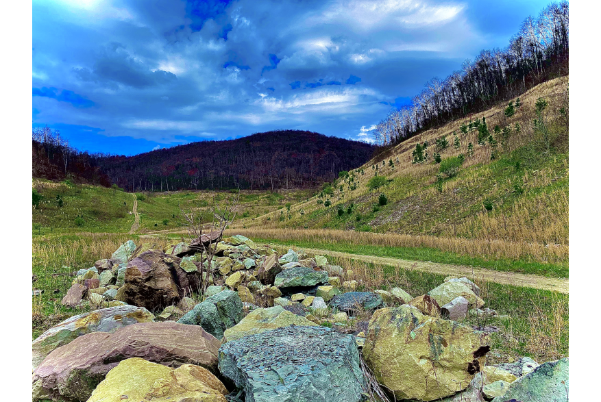 #CaptureTheKentuckyWildlands Photo Contest May/June 2021 - Altered Image - Multi colored Rocks by the Road Photo Taken and Altered by Matthew Aslinger