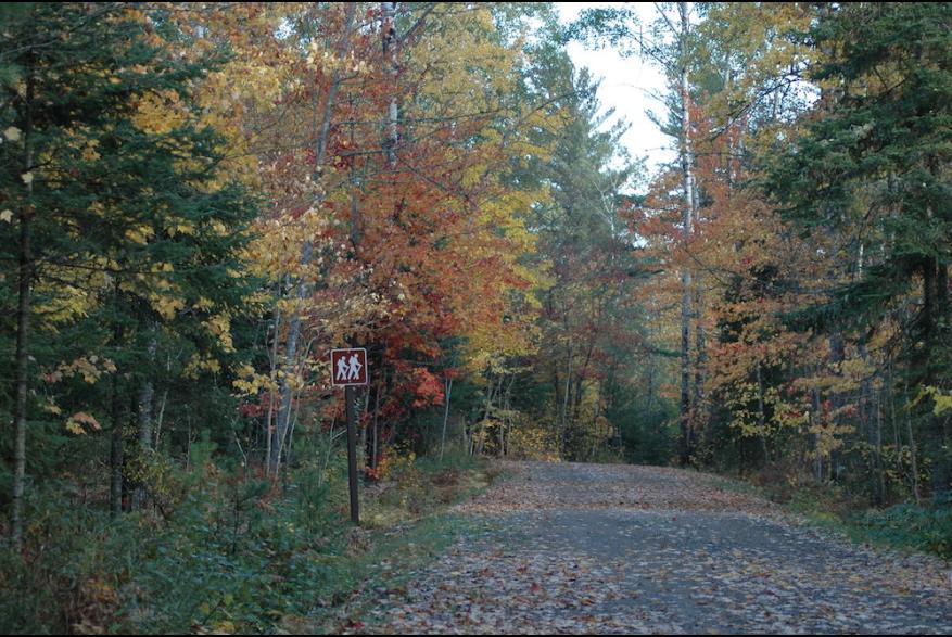 Scenic drive in Fall