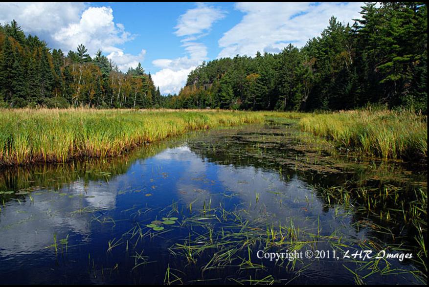 Grassy waterway