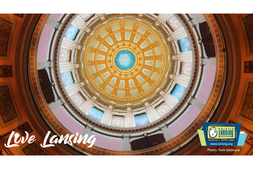 Zoom Background - Capitol Dome