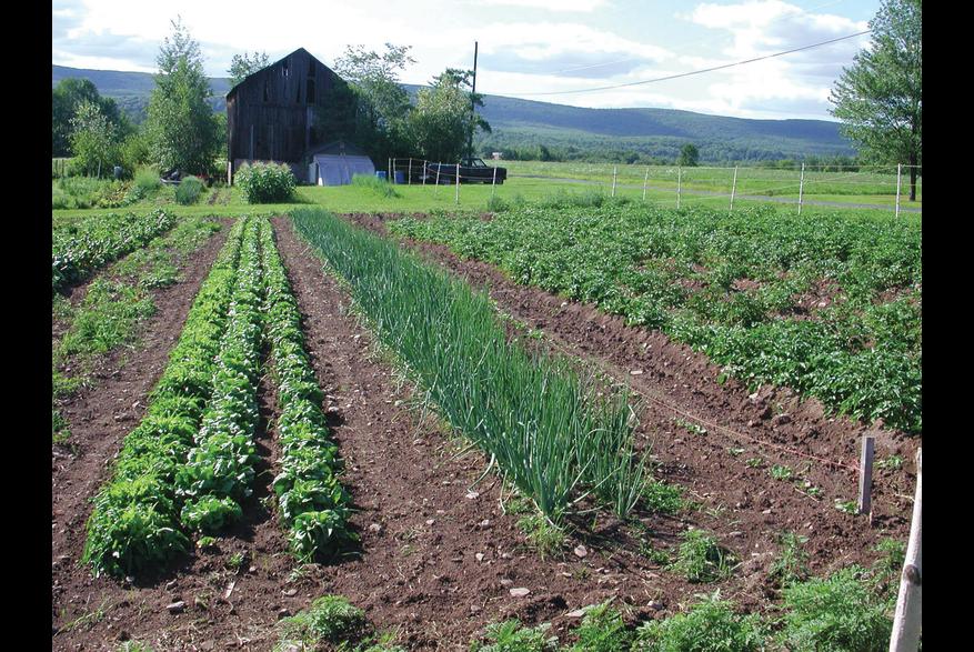 Agritourism in the Pocono Mountains