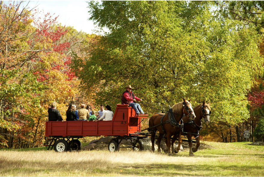 Fall Pocono Horse-Drawn Hayride