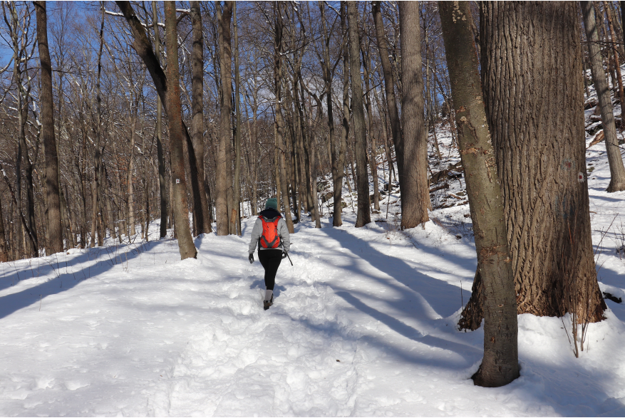 Winter Hiking in the Pocono Mountains
