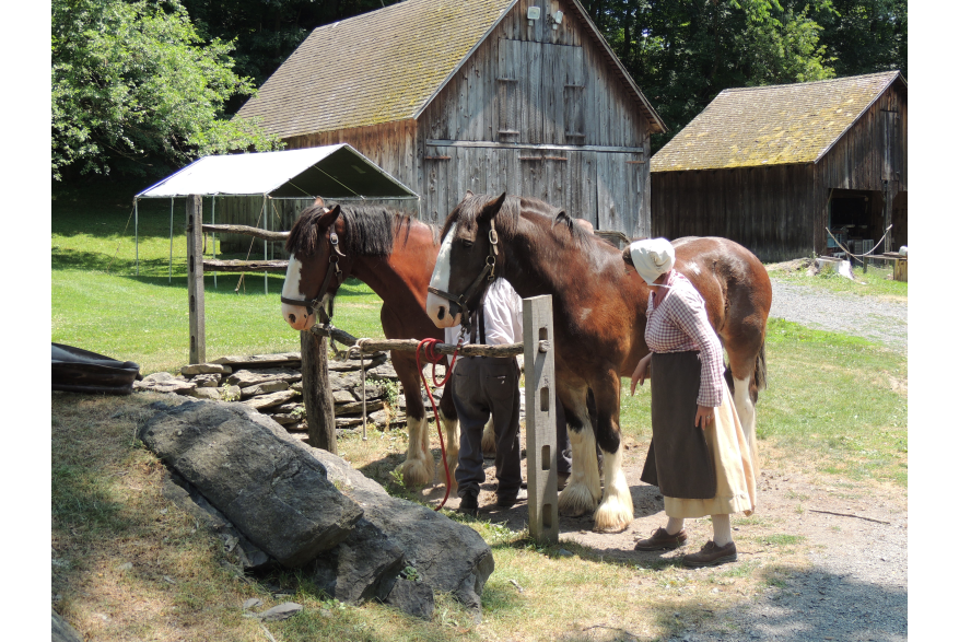 Quiet Valley Guide with Clydesdales