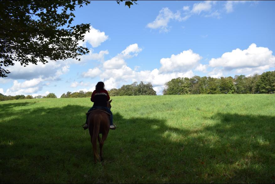 Poconos Horseback Riding Fun