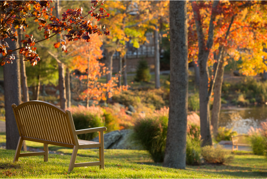 Fall Views at Woodloch Resort in the Pocono Mountains